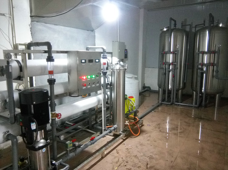 郴州金福嘴饮料公司纯水设备